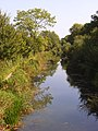 The Basingstoke Canal - geograph.org.uk - 956883.jpg
