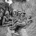 The British Army in Italy 1944 NA11626.jpg