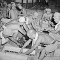 The British Reoccupation of Malaya SE6745.jpg