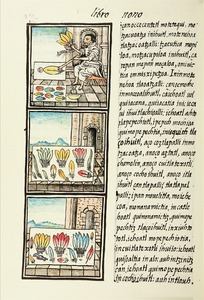 The Florentine Codex- Aztec Feather Painters I.tif