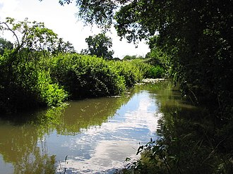 Holy Brook - The Holy Brook towards its upstream end, to the south of Calcot.