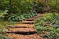 The Morrison Woodland Garden (6618095675).jpg