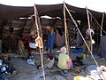 The Nomads Simple Life (266139764).jpg