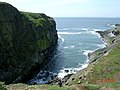 The Wick, Skomer Island - geograph.org.uk - 58959.jpg
