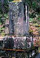 The grave of Shirou Akabane.jpg