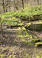The outlet from the former sewage tank, Cromwell Wood, Southowram - geograph.org.uk - 399956.jpg