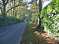 The road to Cranborne from Alderholt Dorset - geograph.org.uk - 272079.jpg