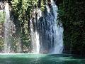 Tinago Falls.jpg