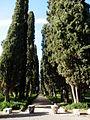 Tivoli- Hadrianus császár - 'Villa Adriana' romkertje22.JPG