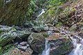 Todtnau - Wasserfallsteig an der oberen Wiese (Hebelweg) Bild 2.jpg