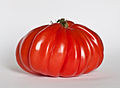 Tomate Cœur de bœuf.jpg