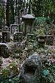 Tono Kizugawa Kyoto pref Japan32n.jpg