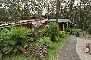 Toolangi, Victoria - The outside of Toolangi Forest Discovery Centre, nestled amongst trees