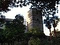 Torre J Murillo.jpg