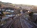 Totnes Railway Lines, Evening Sunshine - geograph.org.uk - 1767369.jpg