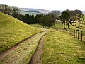 Track on Hyden Hill - geograph.org.uk - 699217.jpg