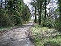 Track past Gwysaney Hall - geograph.org.uk - 735687.jpg