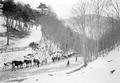Trainkolonne im verschneiten Wald - CH-BAR - 3239319.tif
