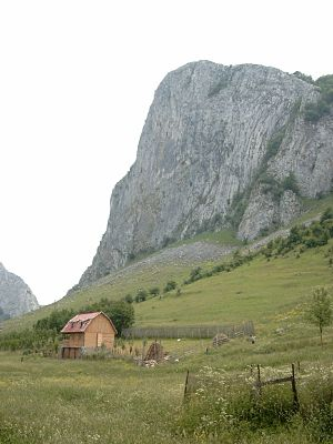 Apuseni Mountains - Trascău Mountains