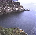 Treen Cliff - geograph.org.uk - 712222.jpg