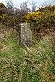 Triangulation Pillar - geograph.org.uk - 740926.jpg