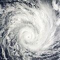 Tropical Cyclone Edzani 2010-01-09.jpg