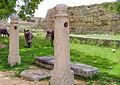 Two Pillars-Dr. Murali Mohan Gurram.jpg