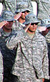 U.S. Soldiers salute while standing in formation during a retreat ceremony at an undisclosed location in Southwest Asia May 28, 2010 100528-F-OK556-632.jpg