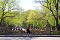 USA-NYC-Central Park-The Mall0.JPG