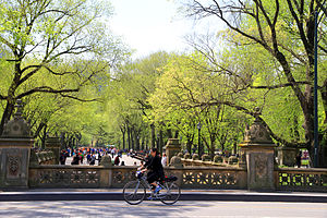 Central Park Mall - Image: USA NYC Central Park The Mall 0