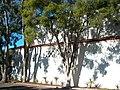 USA-Santa Barbara-Riviera Campus-Furse Hall-5.jpg