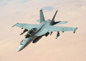 複座型のF/A-18F