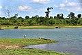 Udawalawa National Park.jpg