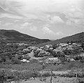 Uitzicht opCuraçao vanaf landhuis Knip, Bestanddeelnr 252-7465.jpg
