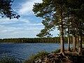 Umeå Nydalasjön (Bucht Dödmanholmen).JPG