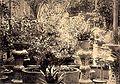 Un jardin au Tonkin.jpg