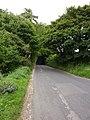 Underdown Hollow - geograph.org.uk - 1454080.jpg