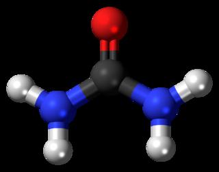 Urea the diamide of carbonic acid