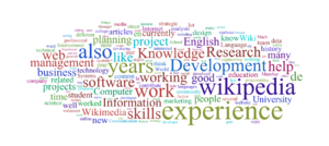 V wordcloud skill.png