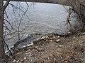 Vadnais Lake - panoramio (1).jpg