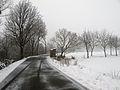 Via Molinazza - Scandiano, Reggio Emilia, Italy - January 30, 2011 01.jpg