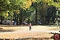 Victorian Autumn.jpg