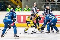 Vienna Capitals vs Fehervar AV19 -121.jpg