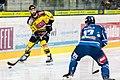 Vienna Capitals vs Fehervar AV19 -64.jpg