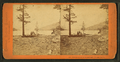 View from foot of Donner Lake, Nevada County, by Thomas Houseworth & Co..png
