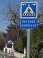 Villabe - 2015-04-06 - IMG-8788 (cropped).jpg