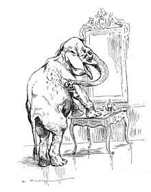 animal consciousness wikipedia Dog vs Human Brain Brain mirror test edit