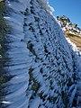 Vitosha view ice3.jpg