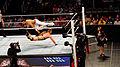 WWE Raw 2015-03-30 16-38-13 ILCE-6000 0374 DxO (18195229849).jpg