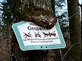Waldweg gesperrt für .... - panoramio.jpg
